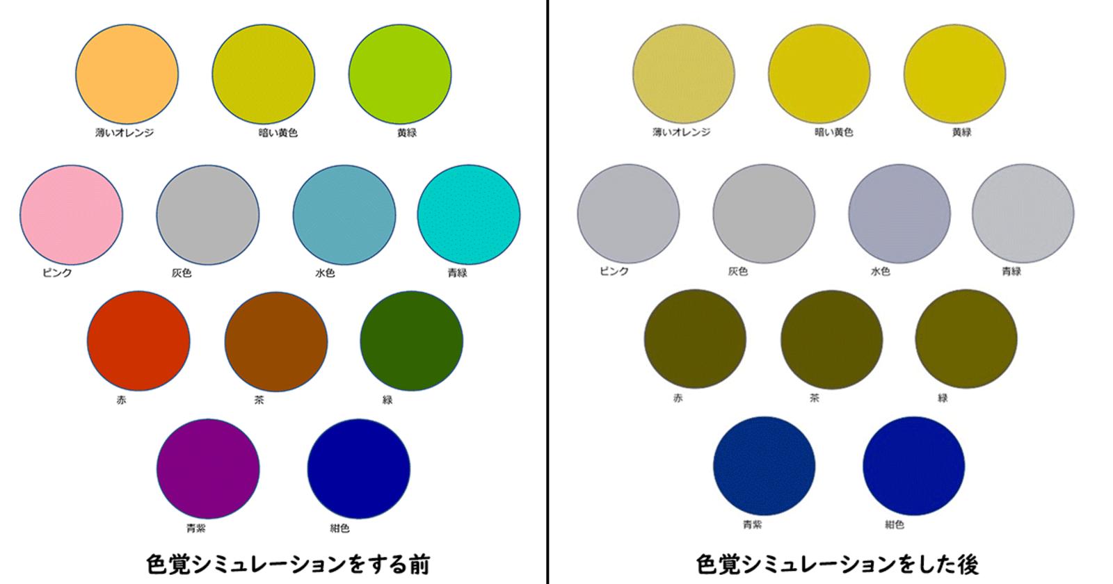人 によって 違う 色